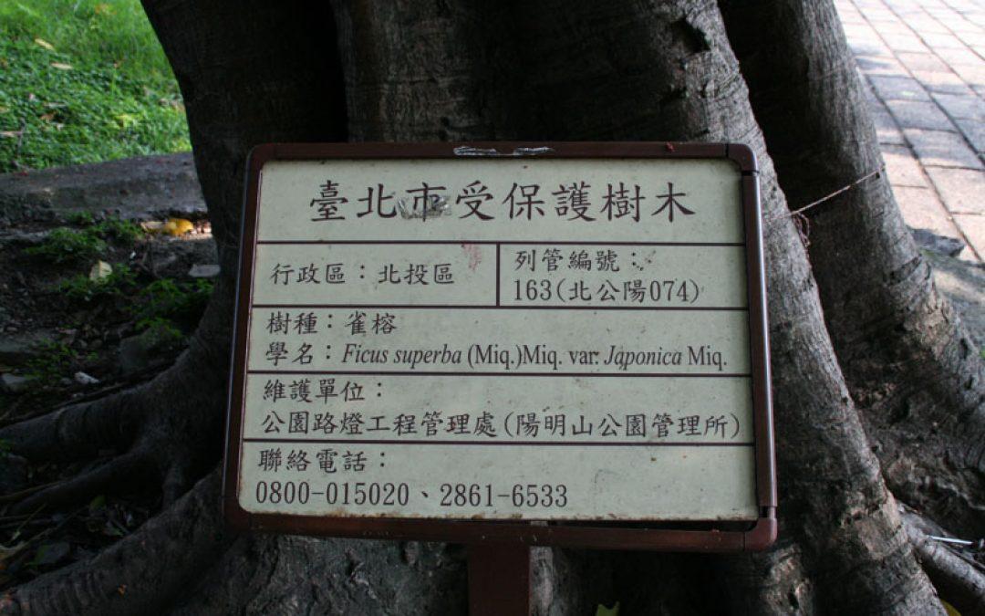 臺北市受保護樹木