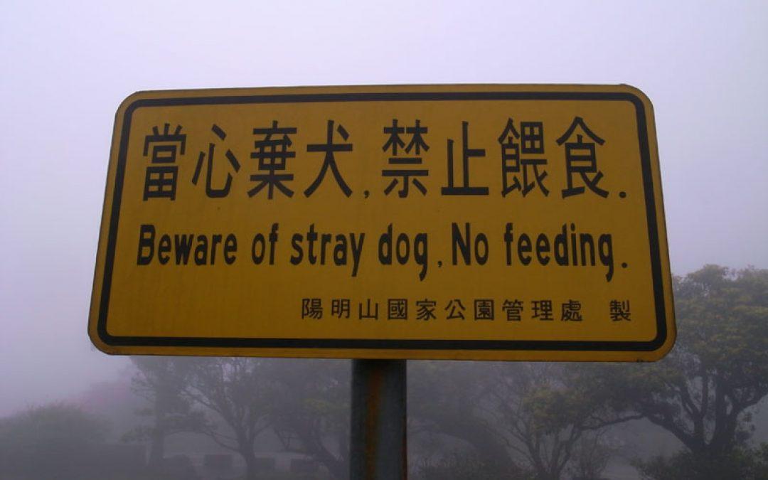 當心棄犬禁止餵食