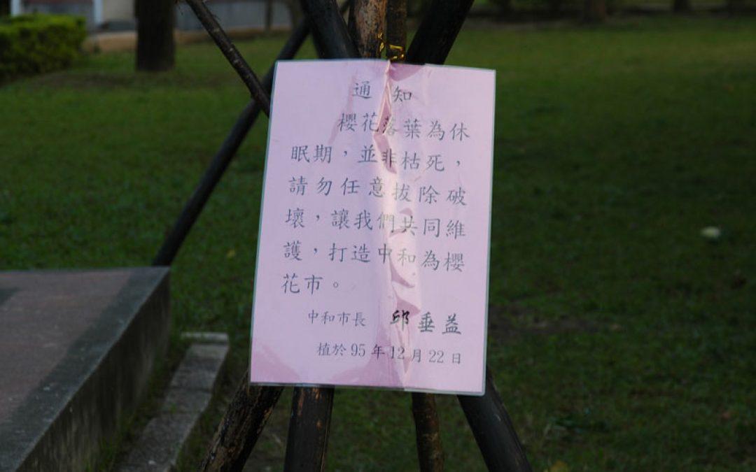 通知櫻花落葉為休眠期,並非枯死,請勿任意拔除破壞,讓我們共同維護,打造中和為櫻花市。